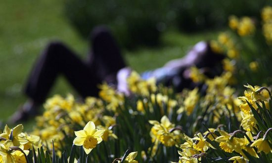 Get Ready For the Chinese Spring Equinox
