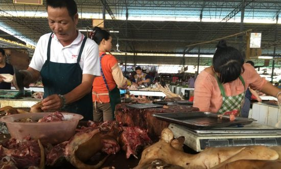 Dog Meat Festival Opens in China Despite Ban Rumors