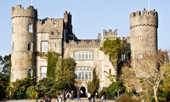 Seals, Puffins, and a Haunted Castle: A Day Trip From Dublin