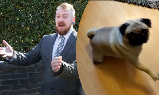 Man Found Guilty of Hate Crime for Teaching Girlfriend's Pug to Give Nazi Salute