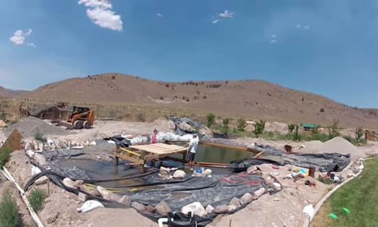 Team sets out to build a natural swimming pool in backyard—what they get is just something else
