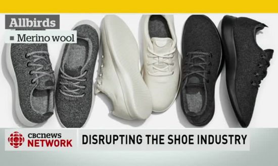 Allbirds' Eco-Friendly Shoes Take Silicon Valley by Storm