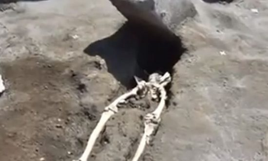 Archaeologists Make Stark Discovery in Pompeii