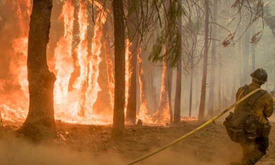 Fire That Prompted Closure of Parts of Yosemite Park Is Contained
